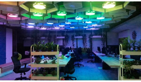 Hệ thống chiếu sáng hiện đại tại ABI Game Studio
